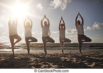 yoga, gens, pose, arbre, confection, groupe, plage