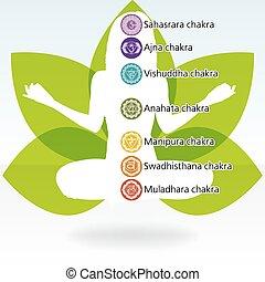 yoga, lotus, template., eps, 8