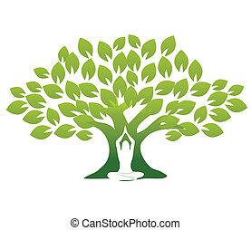 yoga, och, träd