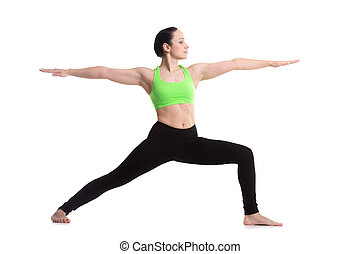 Yoga Pose Warrior 2