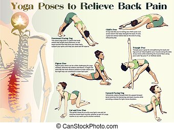 Yoga Poses to Relieve Back Pain - A set of yoga postures...