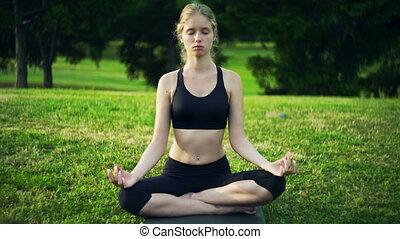 yoga, séance, lotus, soleil, pose, lumière soleil, matin, ...