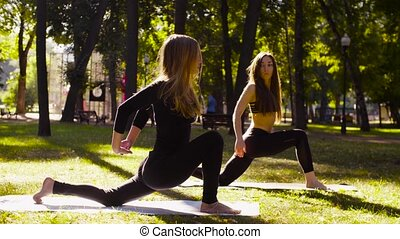 Yoga. Two attractive woman doing yoga exersices in the park....
