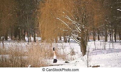 yoga., yoga, hiver, forêt