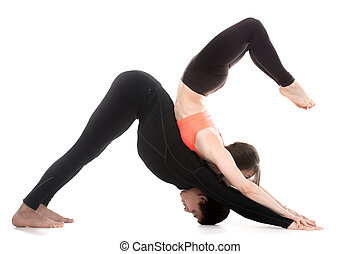 Yogi couple in yoga downward-facing dog and scorpion poses -...