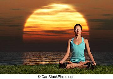 yogi, sunrise.