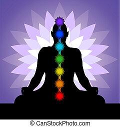 yogui,  chakras