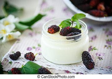 yogurt, com, amora