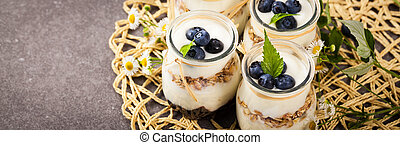 Yogurt Dessert with Blueberries - Healthy Greek Yogurt with ...