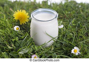 Yogurt jar on the grass with cflowers