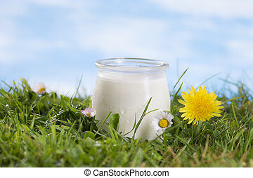 Yogurt on the grass with cflowers