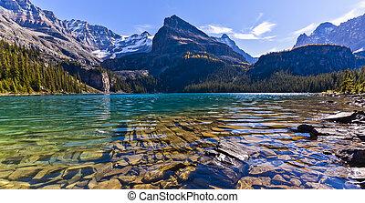 yoho, escénico, parque nacional, lago, o'hara