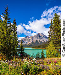 Yoho National Park, Canada - Solar cool morning in Rocky...