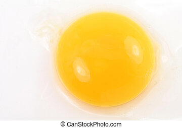 yolk - yellow yolk close up shot