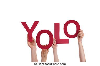 yolo, dzierżawa wręcza