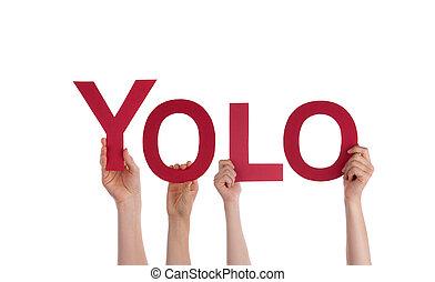 yolo, vasthouden, mensen
