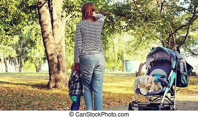 Yong mother with child son in autumn park walking next to pram in slowmotion. 1920x1080