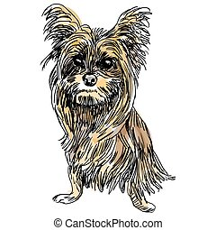 Yorkie Dog Sketch - An image of a sketch of a Yorkshire...