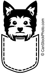 Yorkie pocket black and white - Yorkie in a pocket plack and...