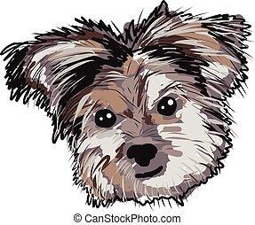 YorkieDogPupFaceSketch - Yorkie Dog Pup Face Sketch