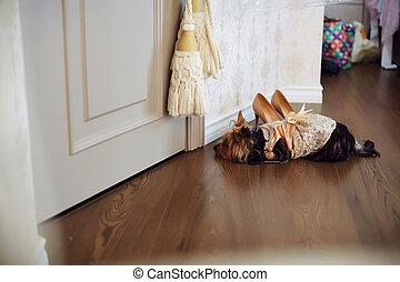 porter costume couple robe mariage porter autre palefrenier regarder mari e. Black Bedroom Furniture Sets. Home Design Ideas