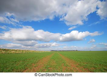 Yorkshire farmland