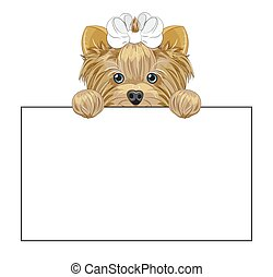 Yorkshire terrier dog frame