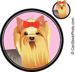 Yorkshire terrier dog head in circle