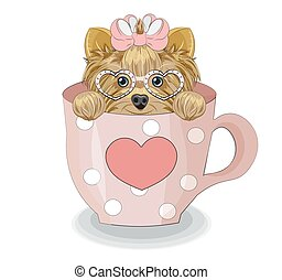 Yorkshire terrier dog in cup