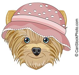 Yorkshire terrier dog in hat