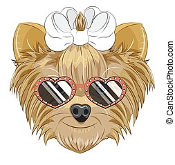 Yorkshire terrier dog in heart sunglasses