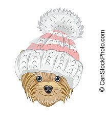Yorkshire terrier dog in winter hat