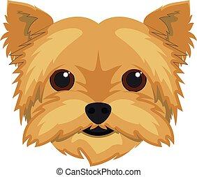 Yorkshire Terrier dog isolated on white background vector illustration