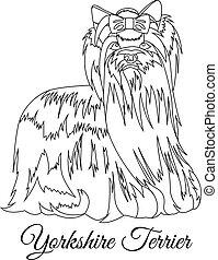 Yorkshire Terrier dog outline vector illustration