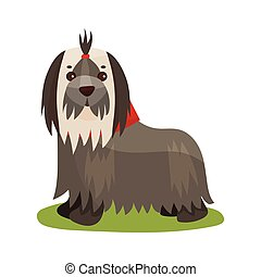 Yorkshire terrier dog, purebred pet animal standing on green grass colorful vector Illustration