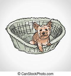 Yorkshire Terrier in Basket