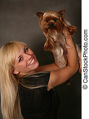 Yorkshire terrier - The girl holds the puppy of the...