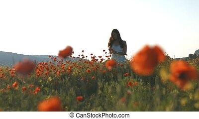 Youn sexy woman in white dress walking in poppies field -...