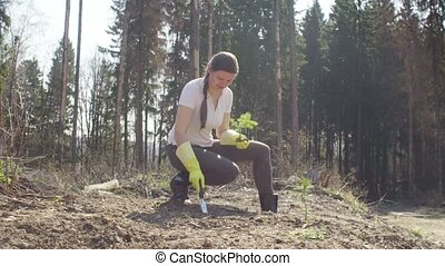 Young activist plants a small fir-tree on the forest...