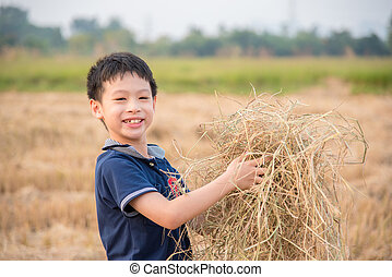 boy playing in rice field after cultivated