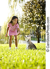 Young Asian girl training puppy to sit - Pretty young Asian...