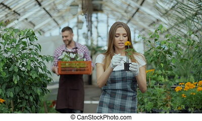 Young attractive florists couple in apron working in...