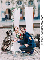 Young attractive wedding couple posing with dog giving a pow...