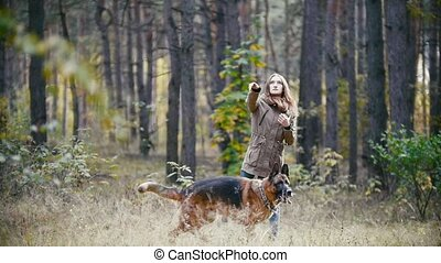 Young attractive woman with red hair playing with her pet - german shepherd - walking at autumn forest - the dog searches for a thrown stick, slow motion