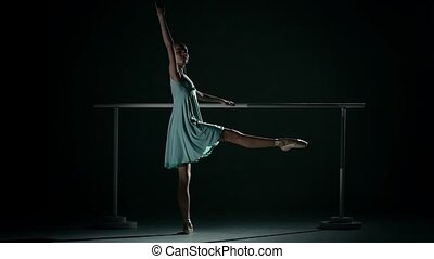 Young ballet dancer wearing an blue tutu. ballerina in the ballet hall on the dance floor. little Ballerina posing, reflection in the mirror on the background. posing ballet barre. slow motion