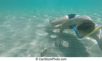 Young bearded man in an underwater mask with a snorkel swims underwater and meets a crab