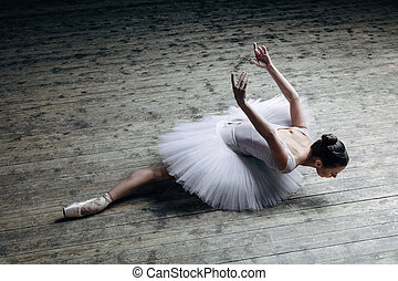 Young beautiful ballerina posing in studio - Young beautiful...