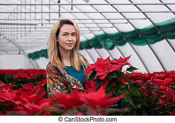 young beautiful woman in a shawl among red flowers in a greenhouse with poinsettias holds one of the flowers in her hands