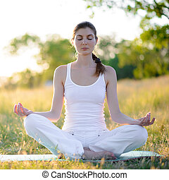 Young Beautiful Woman Practices Yoga on the Sunny Meadow....