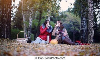Young beautiful women sitting on picnic drinking hot tea from a thermos in autumn park. Girls sitting near the pumpkin of Halloween theme. 1920x1080